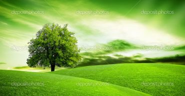 Eco green planet
